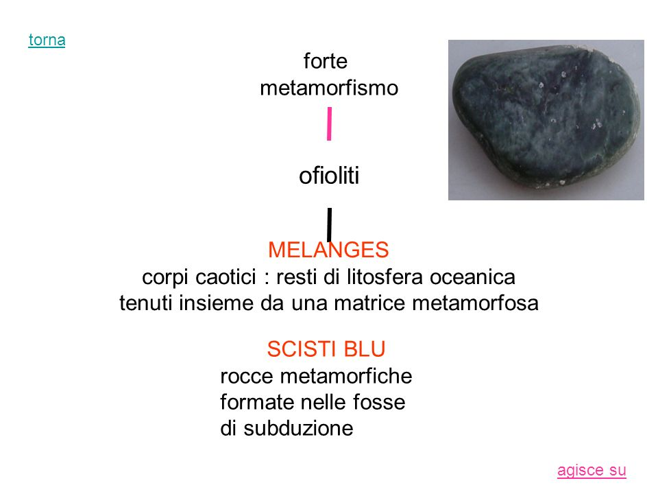 SCISTI BLU rocce metamorfiche formate nelle fosse di subduzione torna
