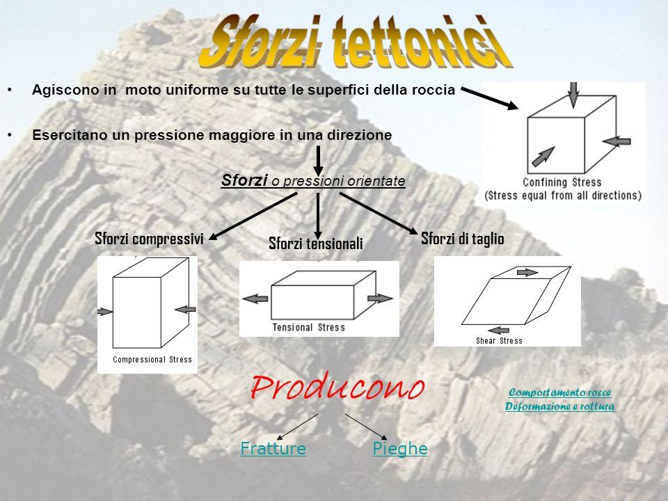 Producono Sforzi tettonici Sforzi o pressioni orientate