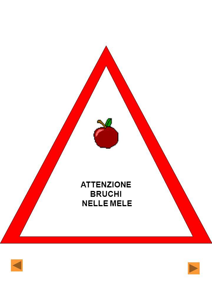 ATTENZIONE BRUCHI NELLE MELE