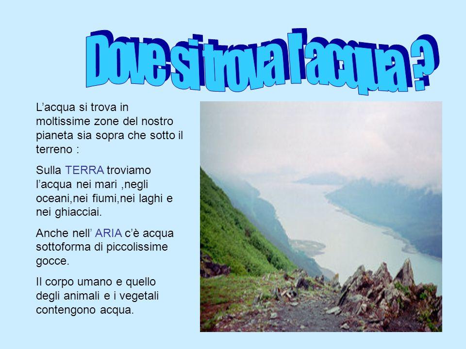 Acqua oro blu ppt video online scaricare for Arredo ingross 3 dove si trova