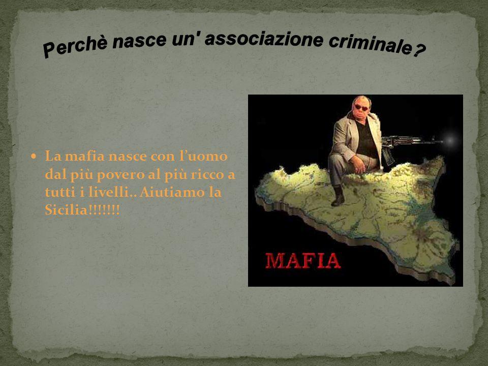 Perchè nasce un associazione criminale