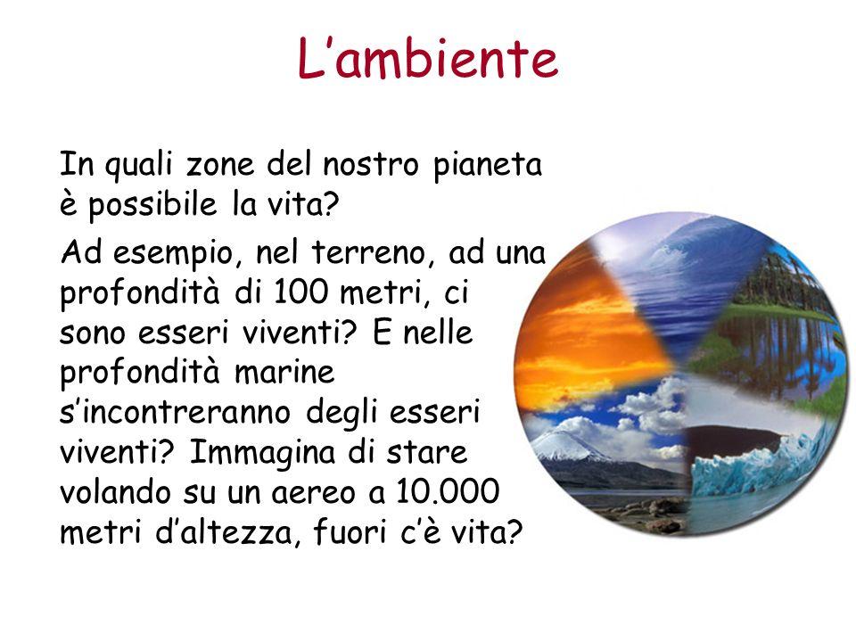 L'ambiente In quali zone del nostro pianeta è possibile la vita