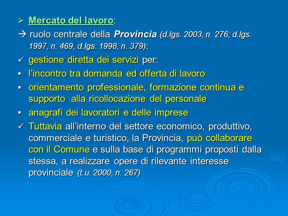Mercato del lavoro:  ruolo centrale della Provincia (d.lgs. 2003, n. 276; d.lgs. 1997, n. 469, d.lgs. 1998, n. 379):