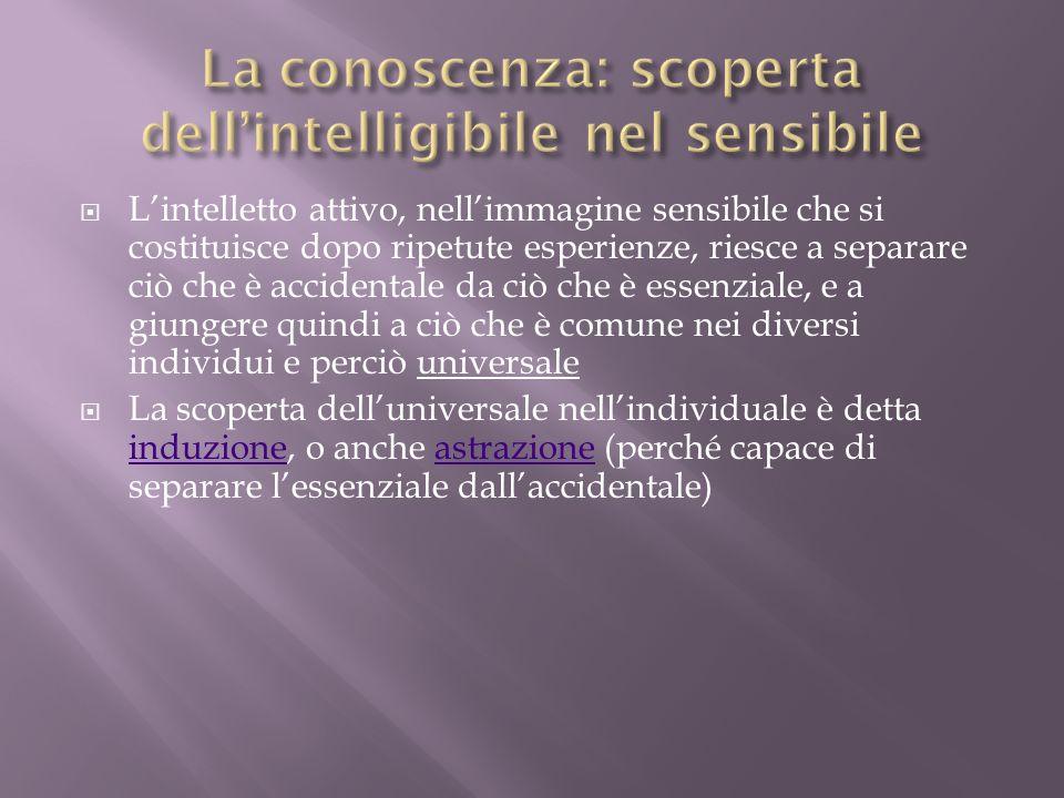 La conoscenza: scoperta dell'intelligibile nel sensibile