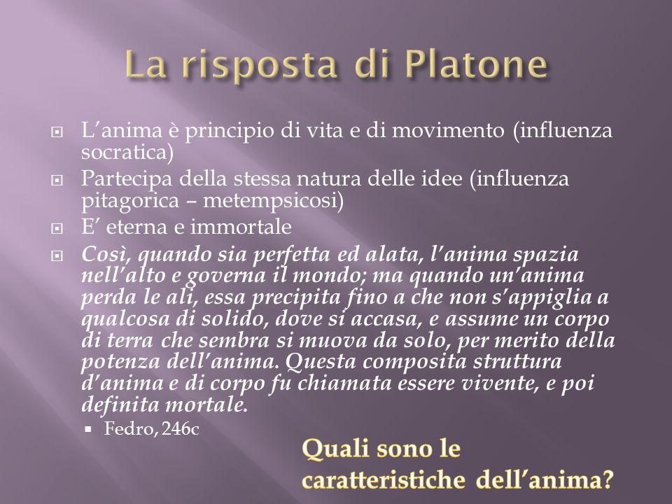 La risposta di Platone Quali sono le caratteristiche dell'anima