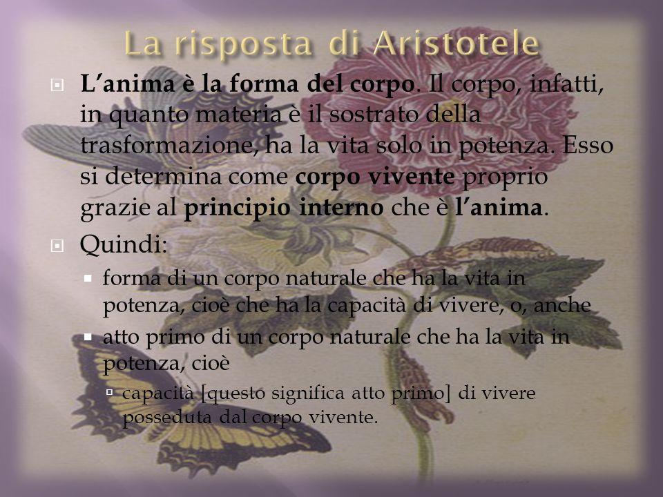 La risposta di Aristotele