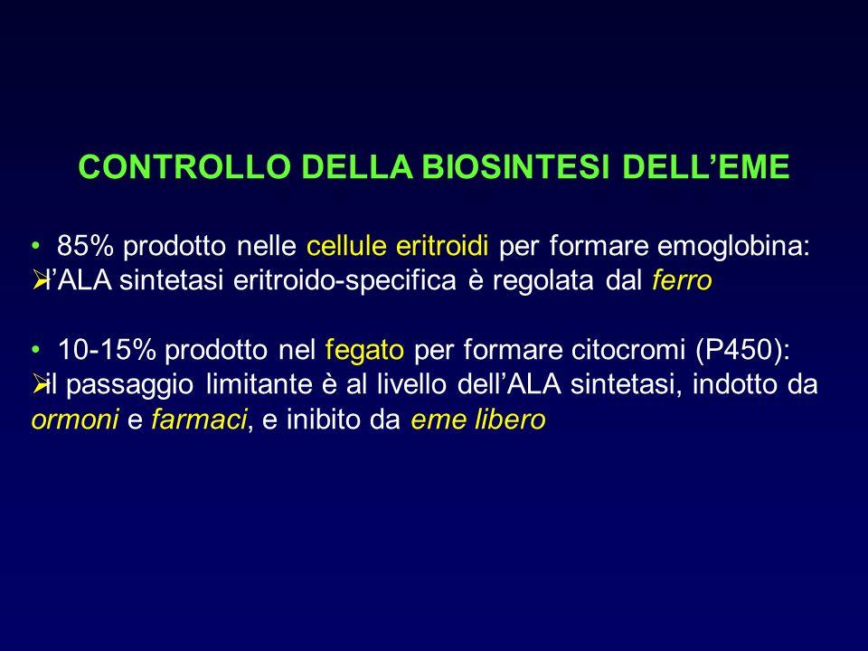 CONTROLLO DELLA BIOSINTESI DELL'EME