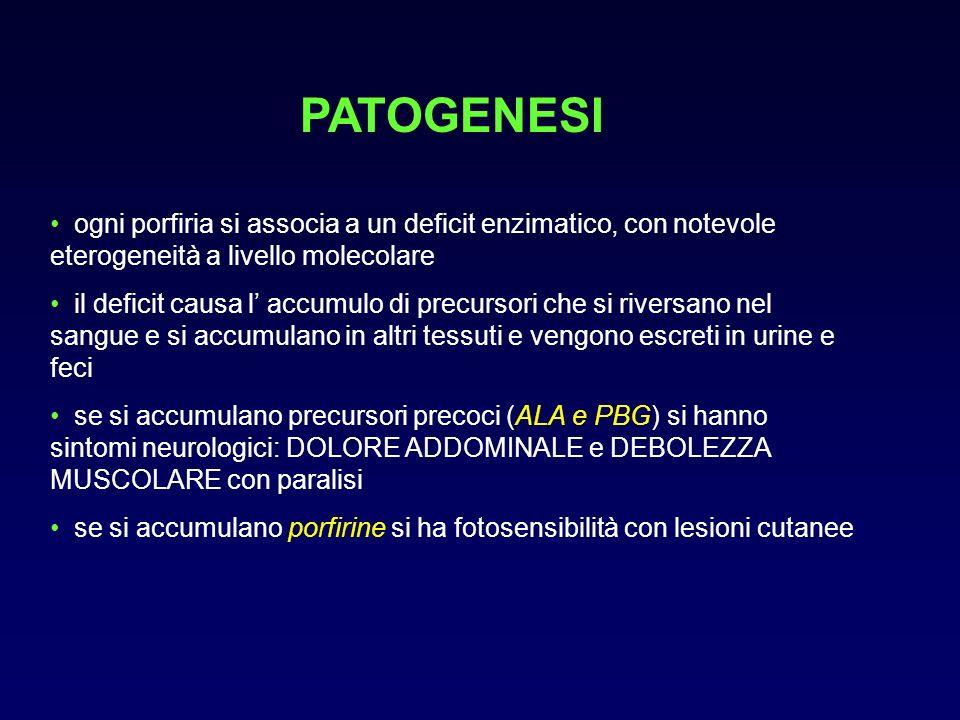 PATOGENESIogni porfiria si associa a un deficit enzimatico, con notevole eterogeneità a livello molecolare.