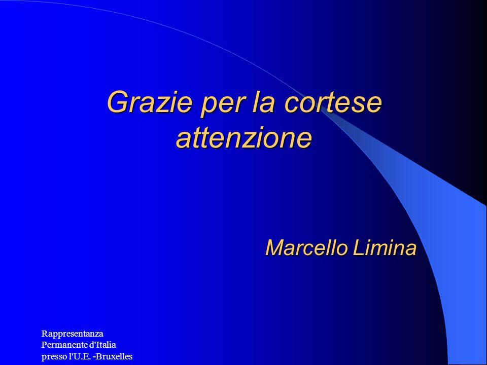 Grazie per la cortese attenzione Marcello Limina