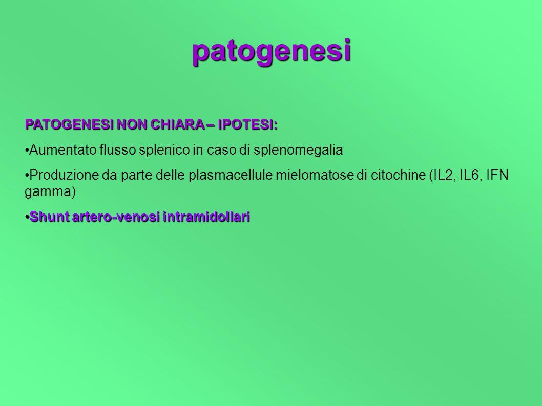 patogenesi PATOGENESI NON CHIARA – IPOTESI: