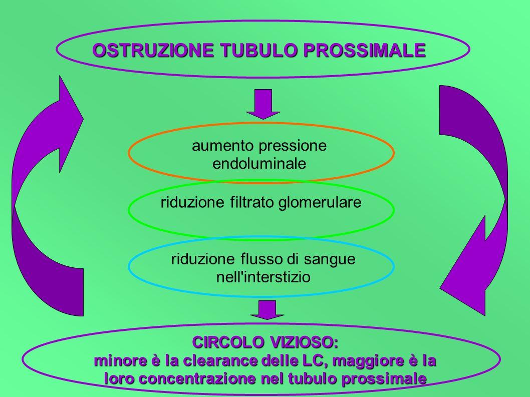 OSTRUZIONE TUBULO PROSSIMALE