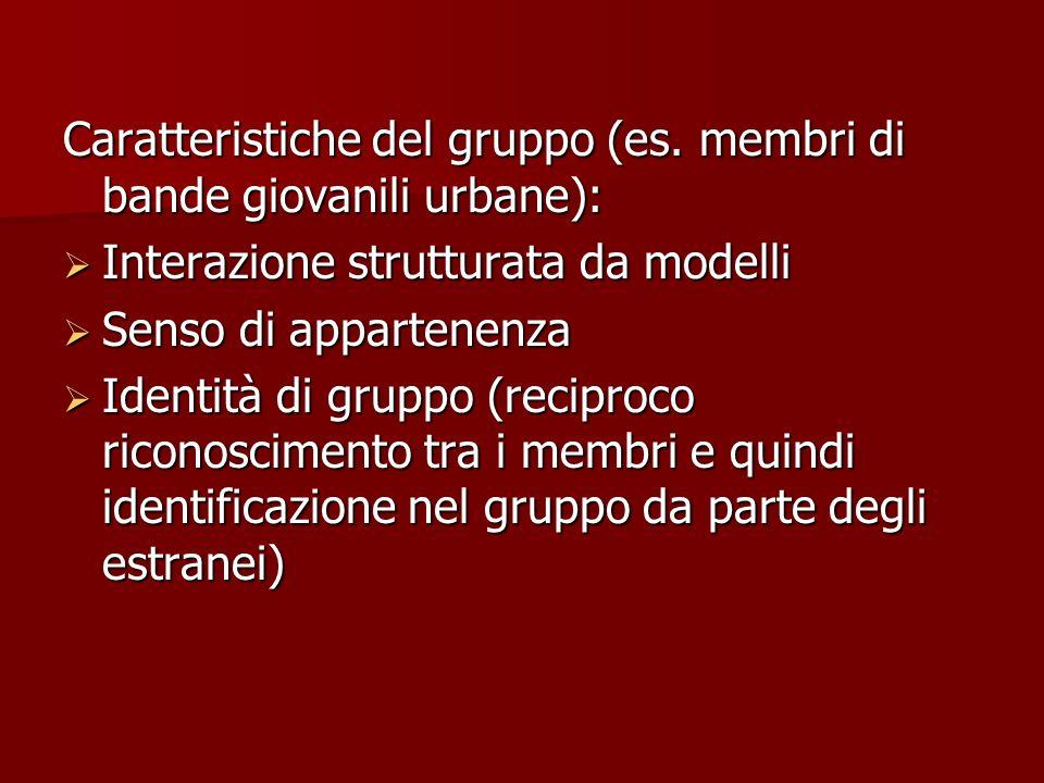 Caratteristiche del gruppo (es. membri di bande giovanili urbane):