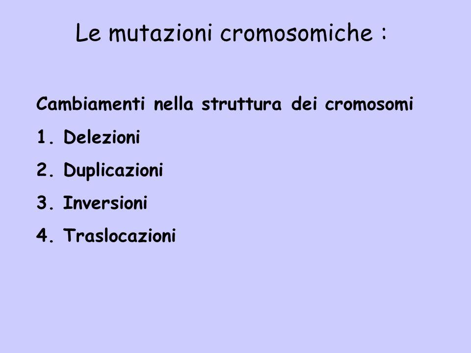 Le mutazioni cromosomiche :