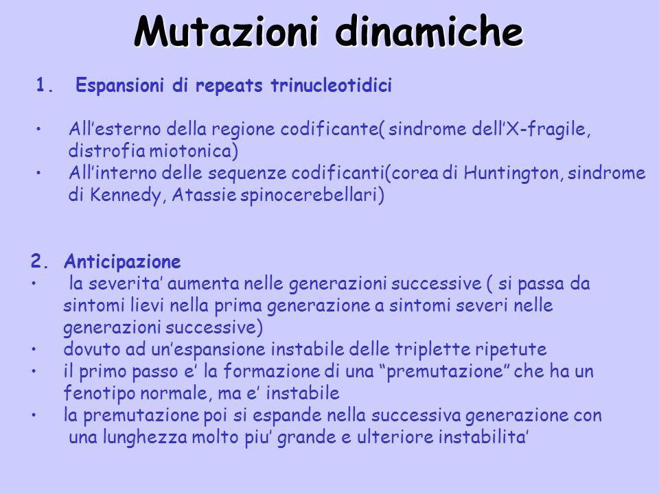 Mutazioni dinamiche Espansioni di repeats trinucleotidici