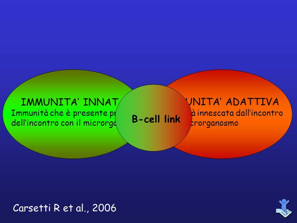 IMMUNITA' INNATA IMMUNITA' ADATTIVA B-cell link