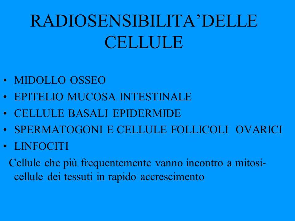 RADIOSENSIBILITA'DELLE CELLULE