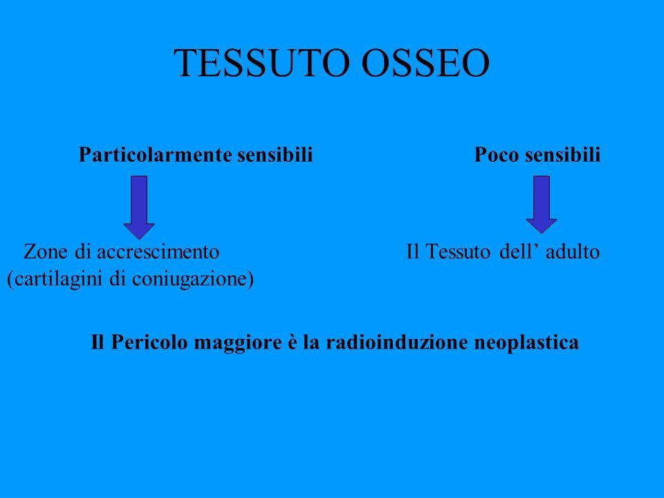 TESSUTO OSSEO Particolarmente sensibili Poco sensibili