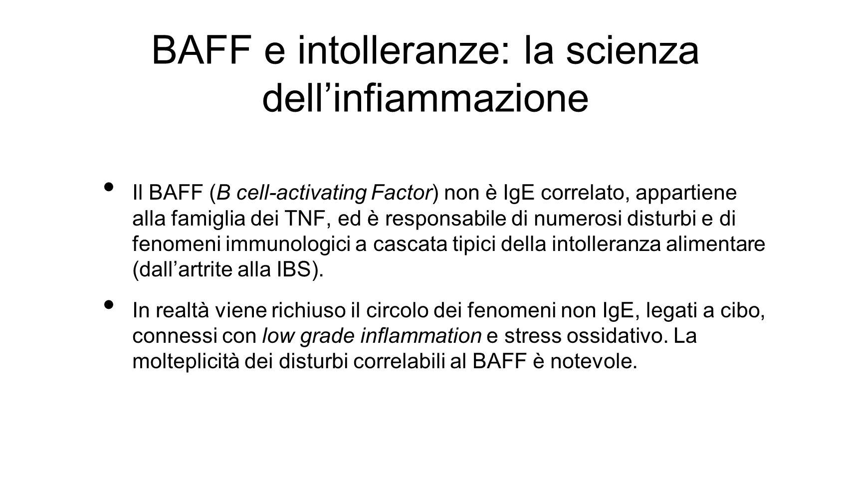 BAFF e intolleranze: la scienza dell'infiammazione