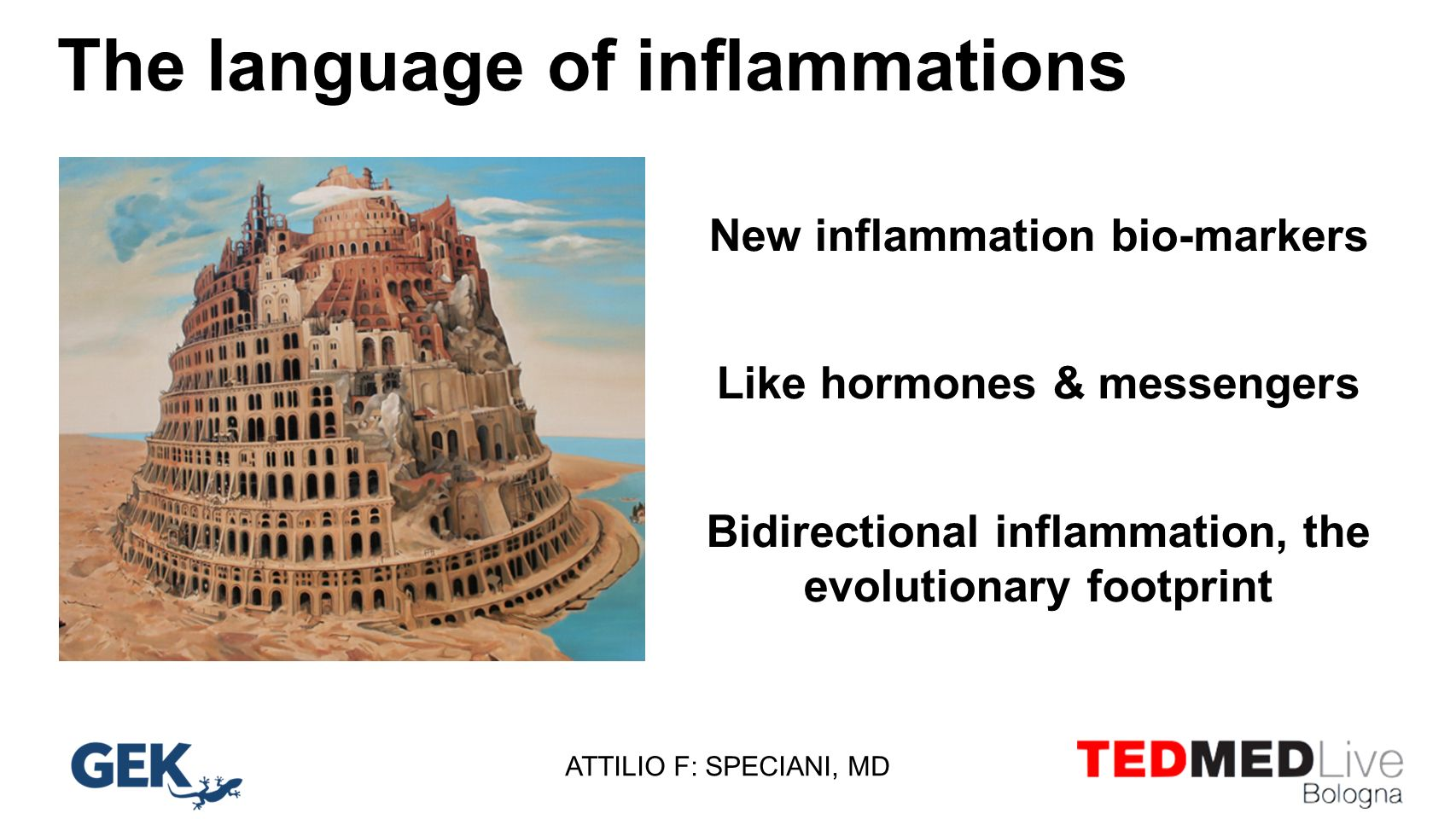 The language of inflammations