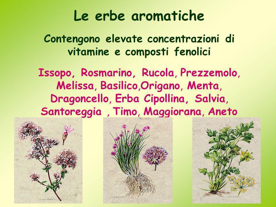 Contengono elevate concentrazioni di vitamine e composti fenolici