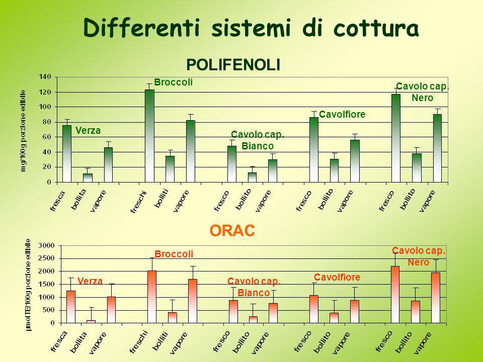 Differenti sistemi di cottura