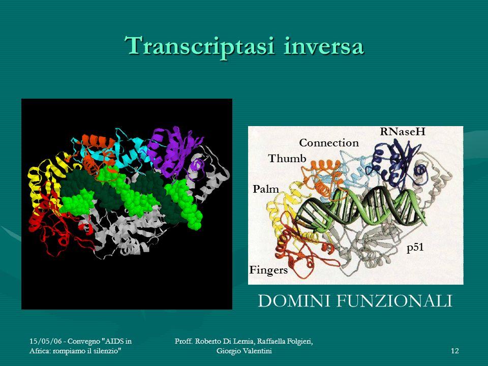 Transcriptasi inversa