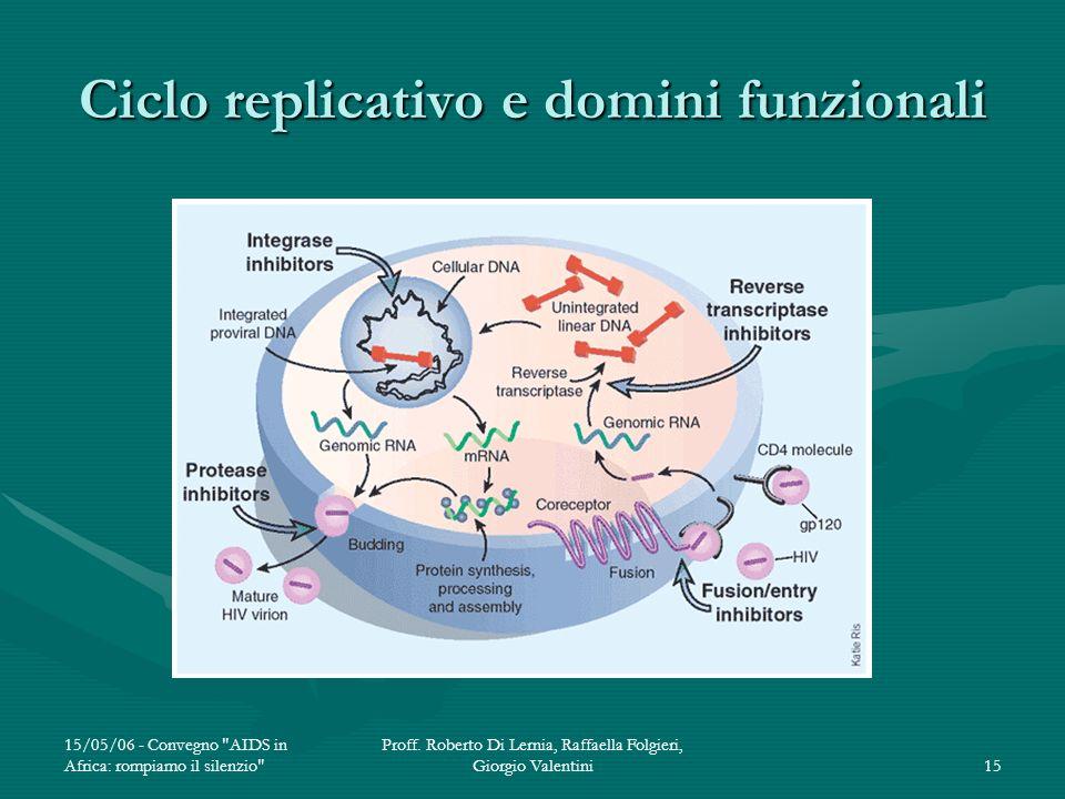 Ciclo replicativo e domini funzionali
