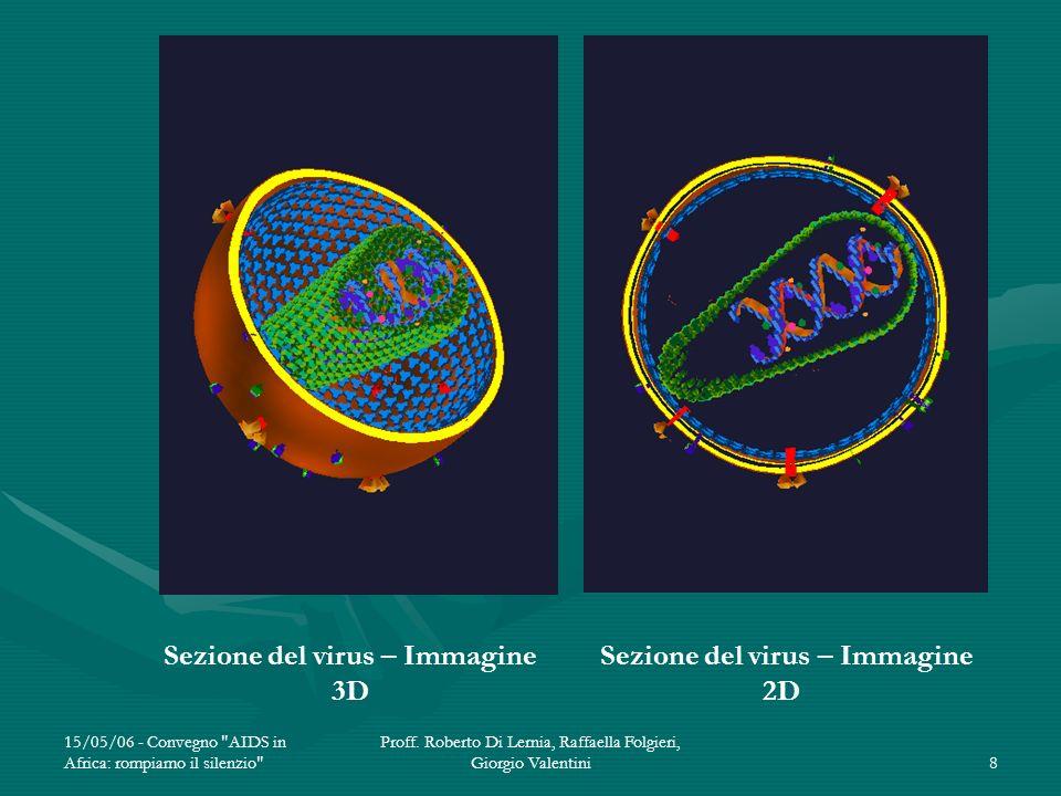 Sezione del virus – Immagine 3D Sezione del virus – Immagine 2D