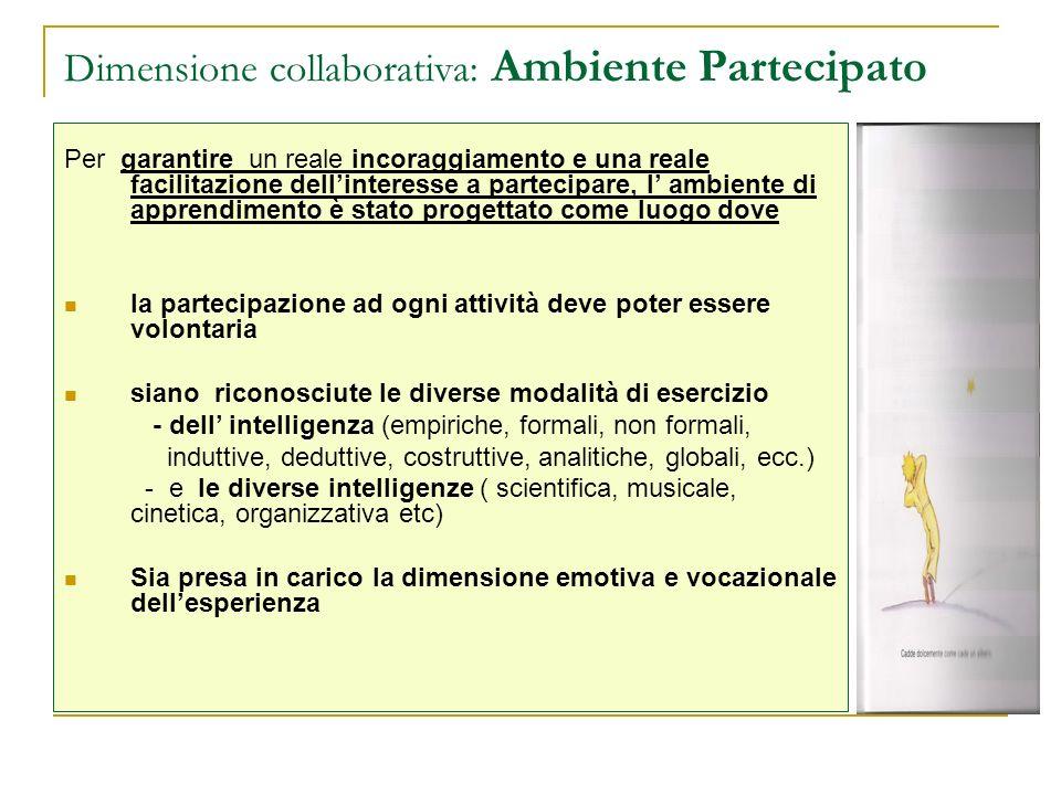Dimensione collaborativa: Ambiente Partecipato