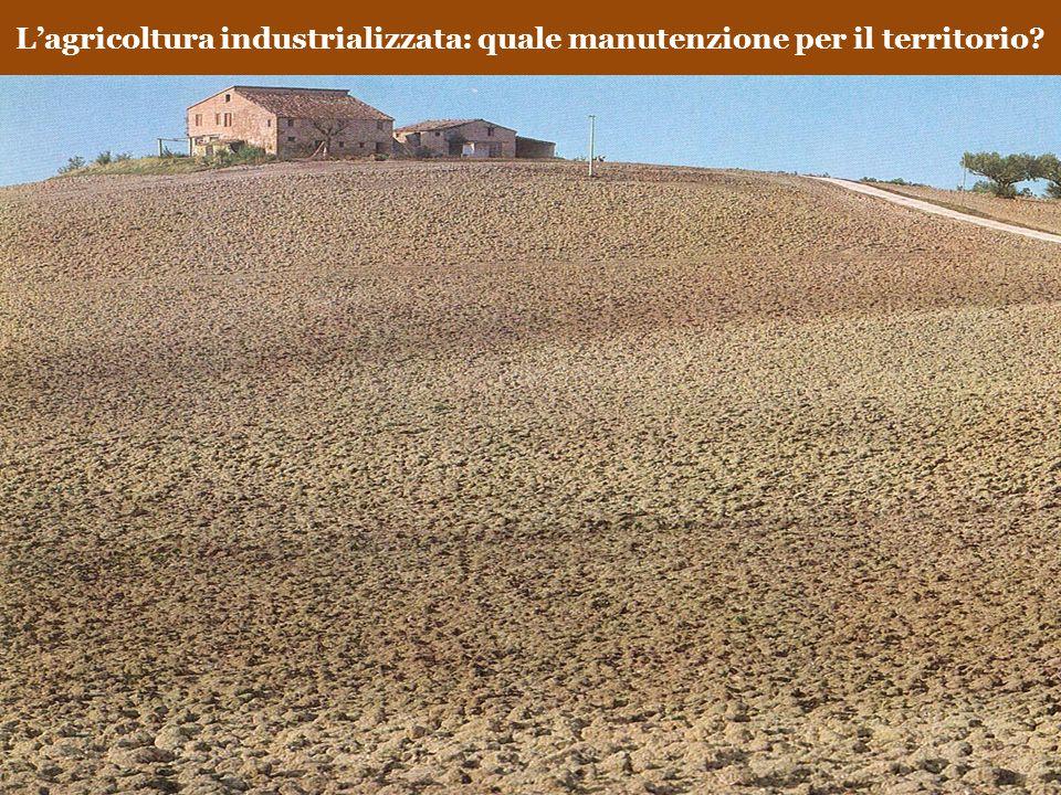 L'agricoltura industrializzata: quale manutenzione per il territorio
