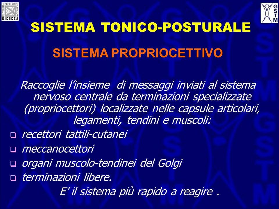 SISTEMA TONICO-POSTURALE