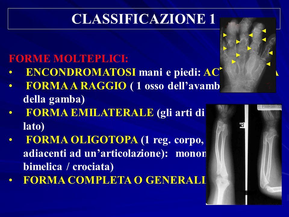 CLASSIFICAZIONE 1 FORME MOLTEPLICI: