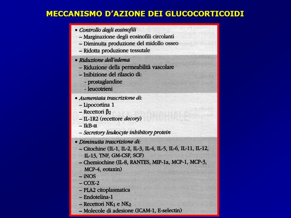 MECCANISMO D'AZIONE DEI GLUCOCORTICOIDI