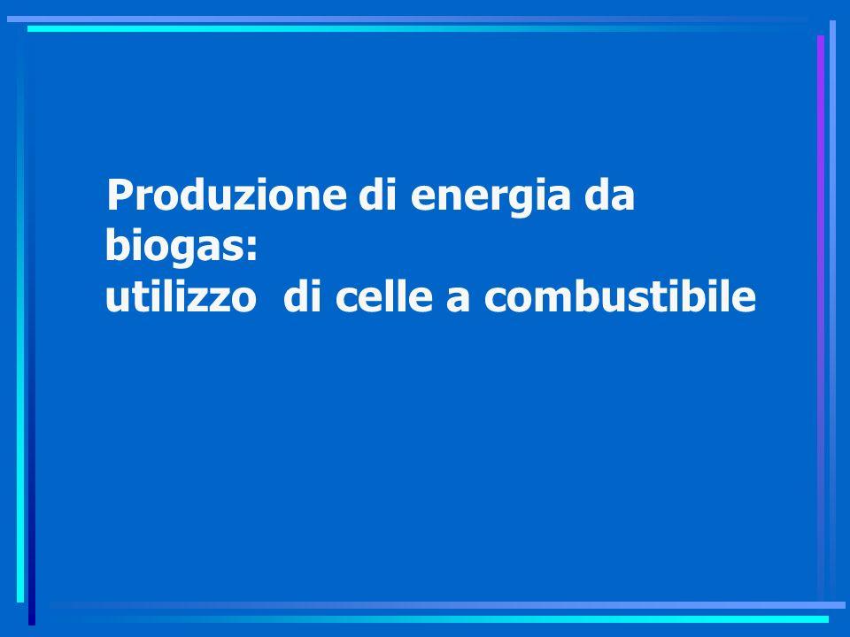 Produzione di energia da biogas: utilizzo di celle a combustibile