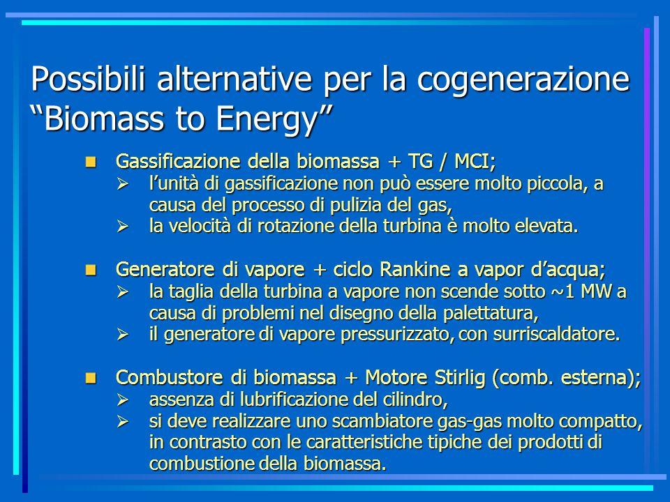 Possibili alternative per la cogenerazione Biomass to Energy
