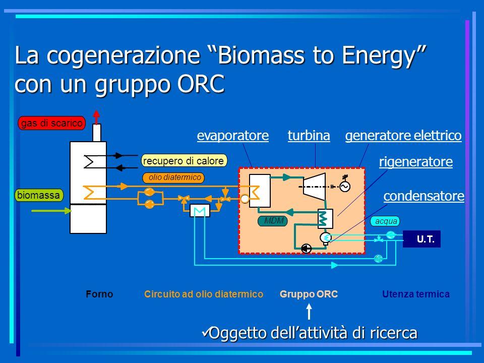 La cogenerazione Biomass to Energy con un gruppo ORC