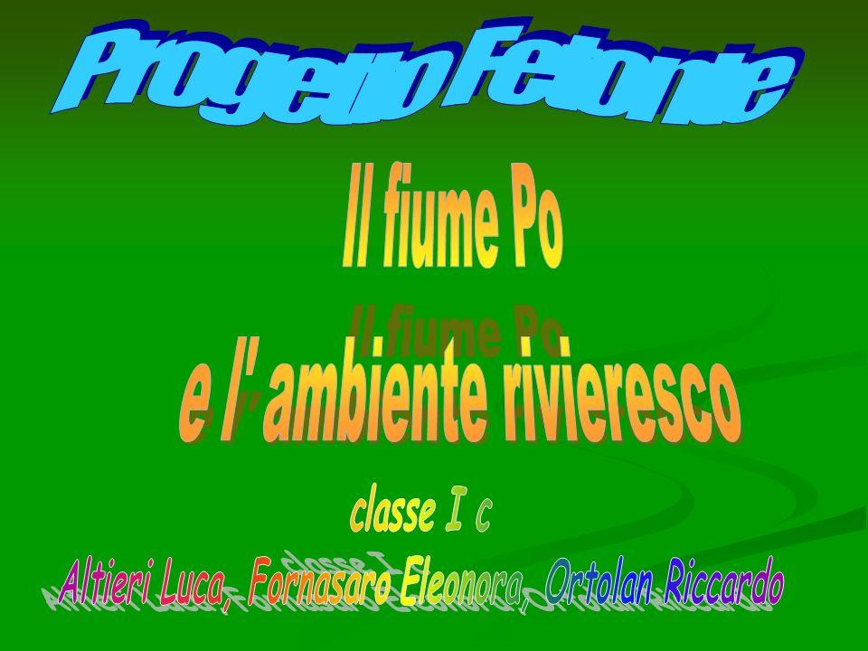 Altieri Luca, Fornasaro Eleonora, Ortolan Riccardo