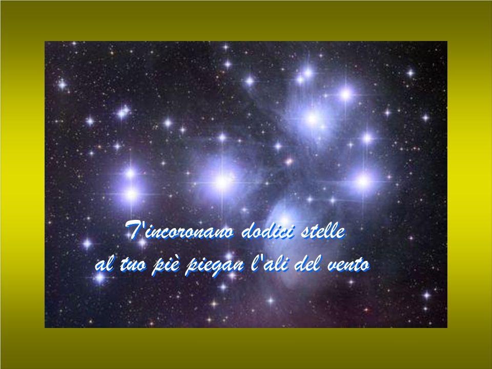 T incoronano dodici stelle al tuo piè piegan l ali del vento