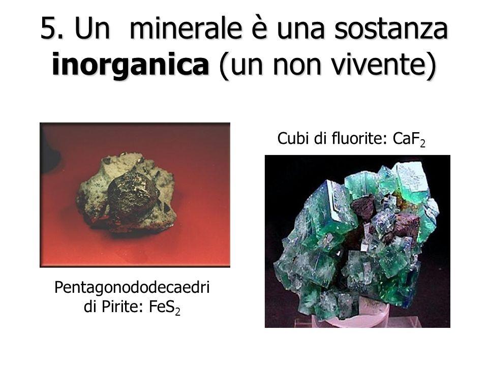 5. Un minerale è una sostanza inorganica (un non vivente)