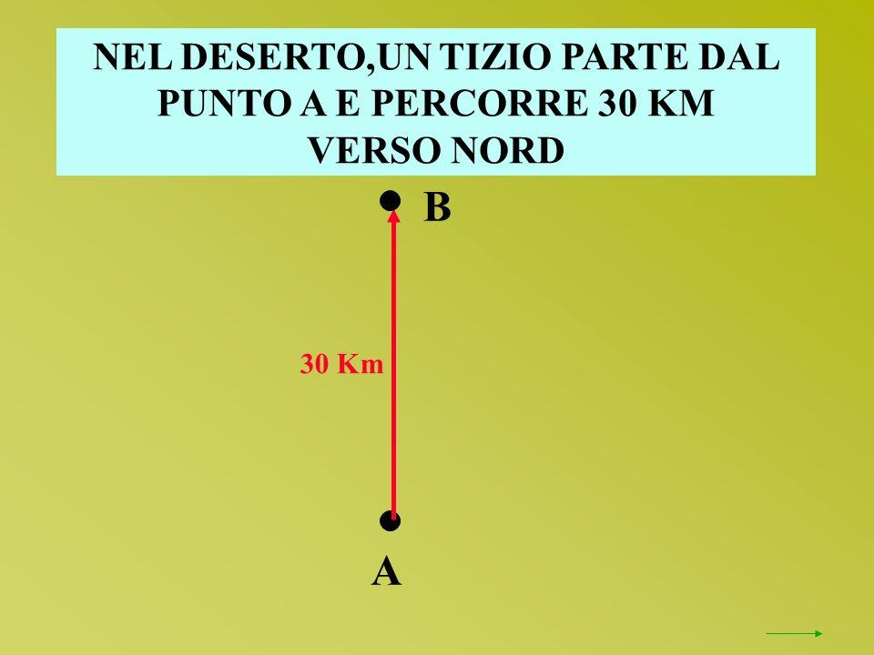 NEL DESERTO,UN TIZIO PARTE DAL PUNTO A E PERCORRE 30 KM