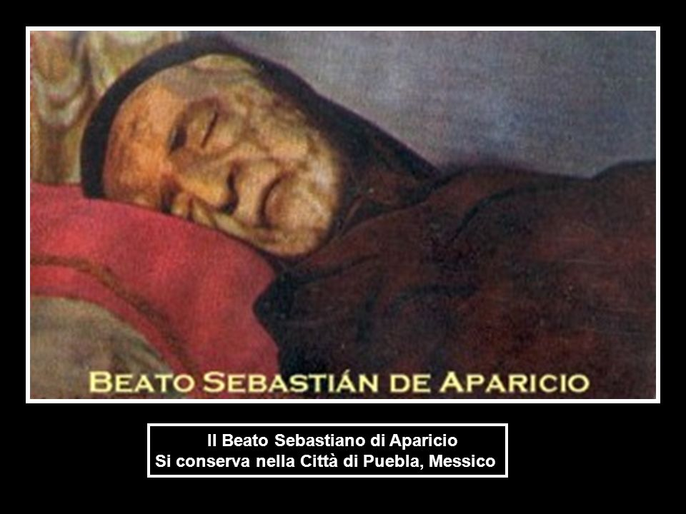 Il Beato Sebastiano di Aparicio