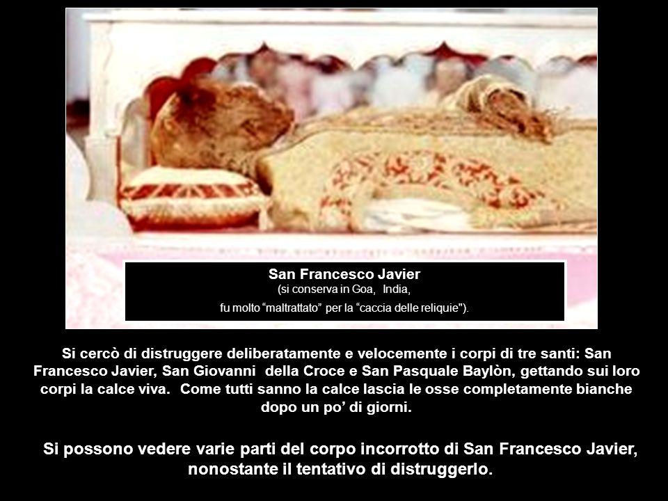 San Francesco Javier (si conserva in Goa, India, fu molto maltrattato per la caccia delle reliquie ).