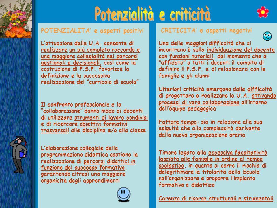 Potenzialità e criticità