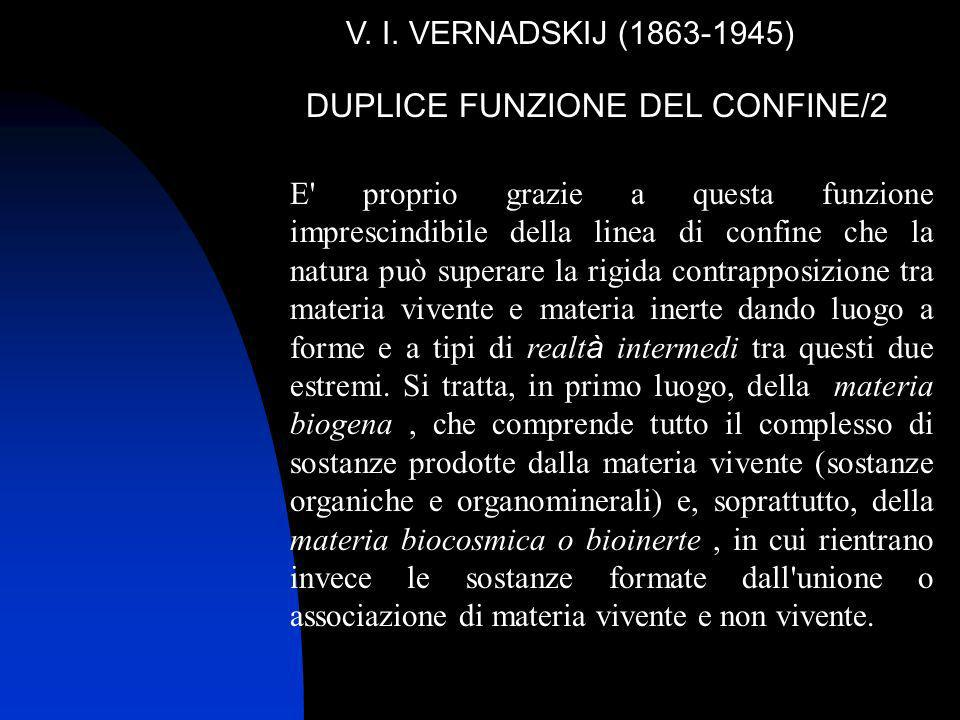 DUPLICE FUNZIONE DEL CONFINE/2