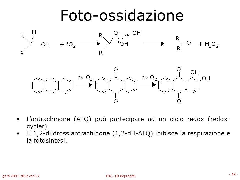 Foto-ossidazione L'antrachinone (ATQ) può partecipare ad un ciclo redox (redox-cycler).