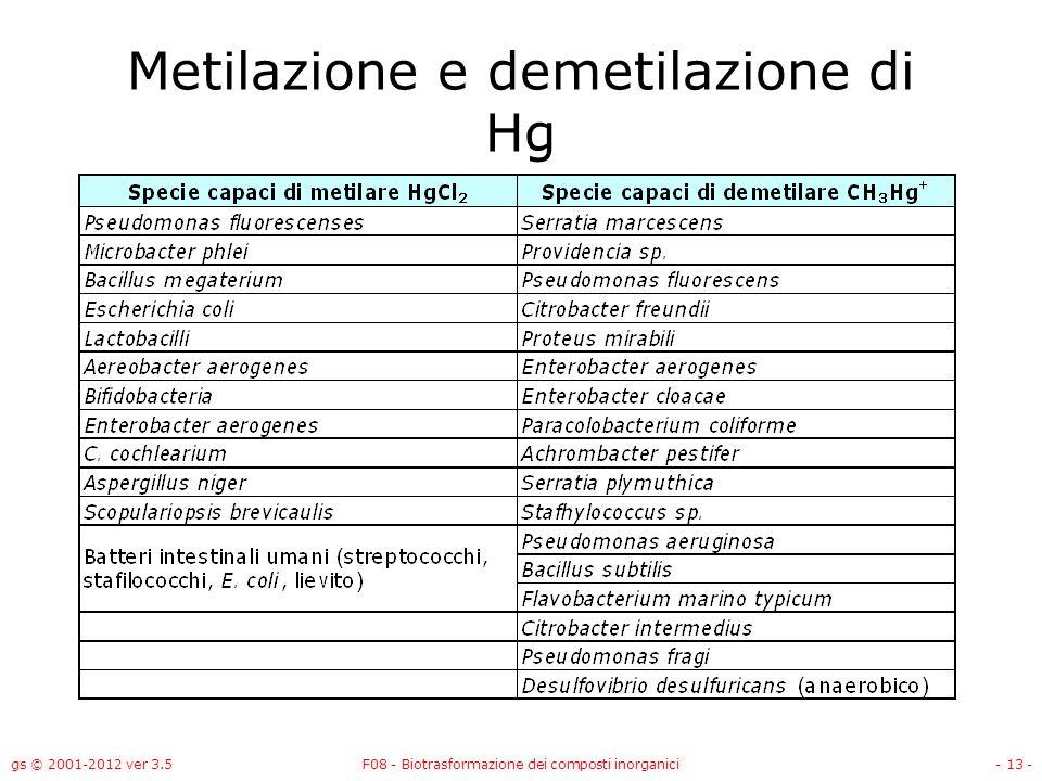 Metilazione e demetilazione di Hg
