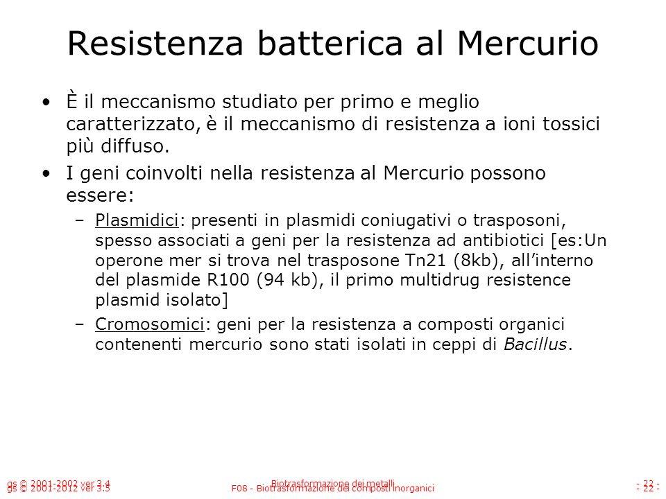 Resistenza batterica al Mercurio