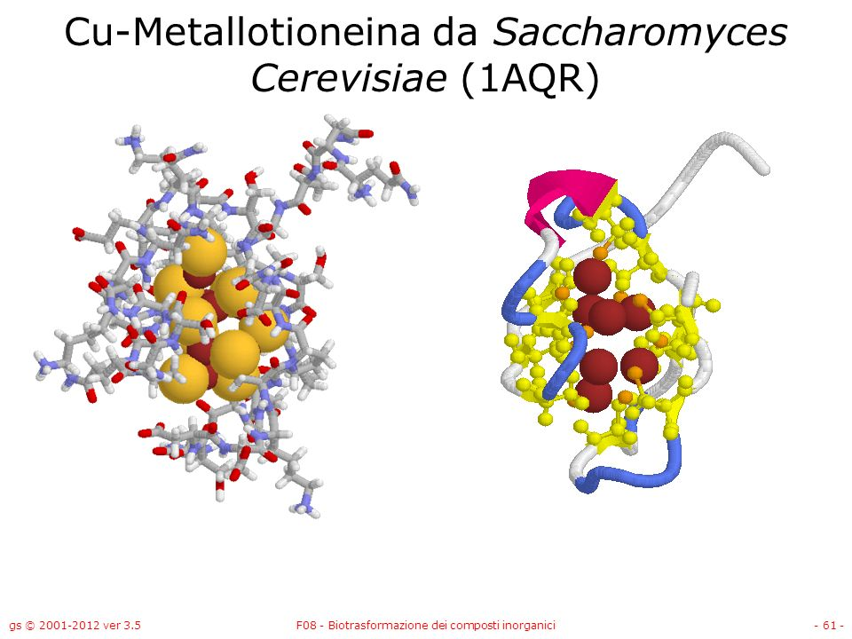 Cu-Metallotioneina da Saccharomyces Cerevisiae (1AQR)