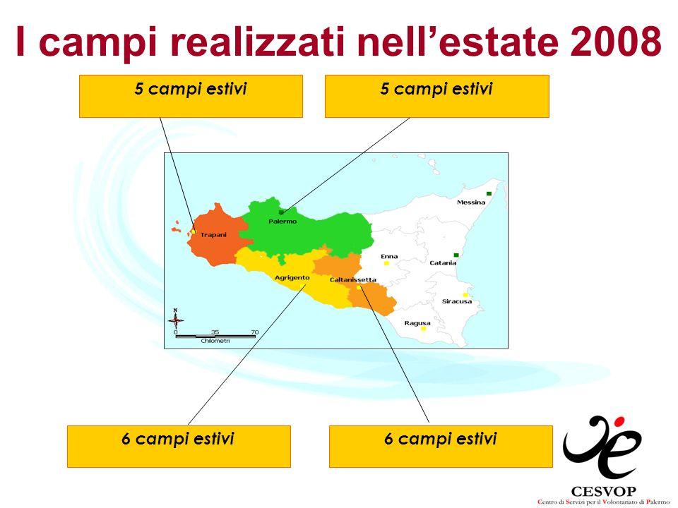 I campi realizzati nell'estate 2008