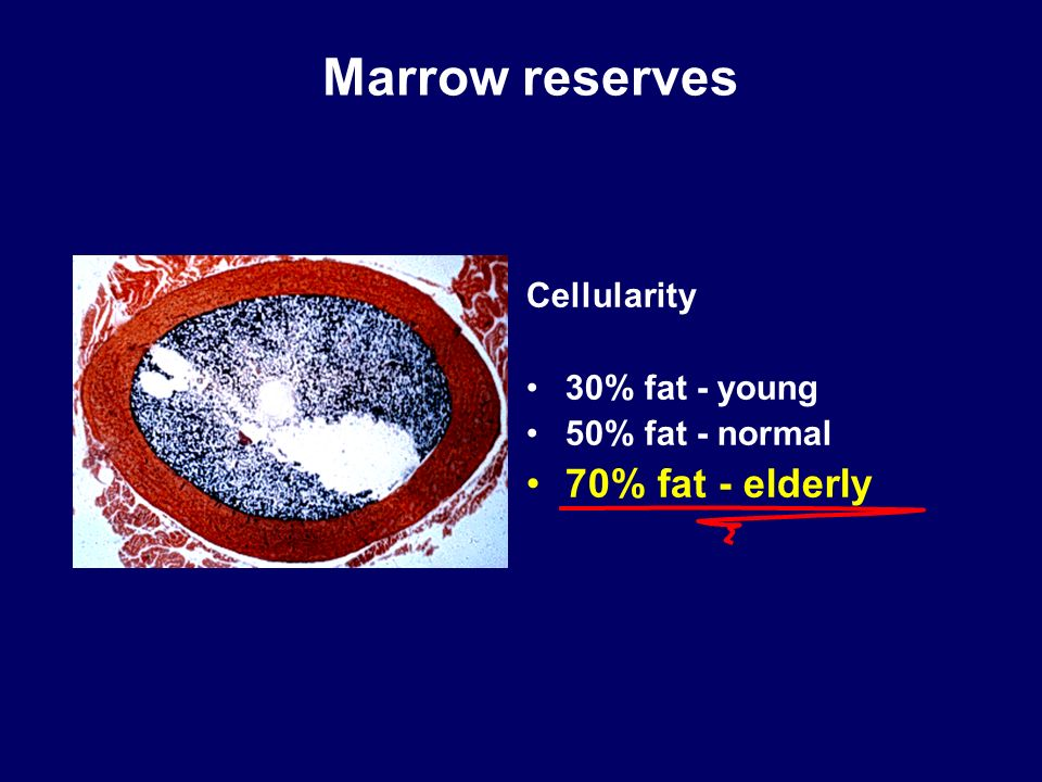 Marrow reserves 70% fat - elderly Cellularity 30% fat - young